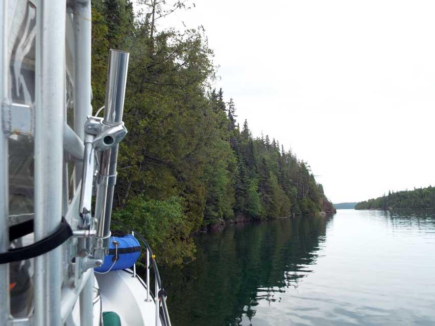Image: Shoreline tree mooring