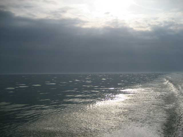 Photo: Low autumn sun shines in a sparking boat wake in Lake Erie, November 2008.