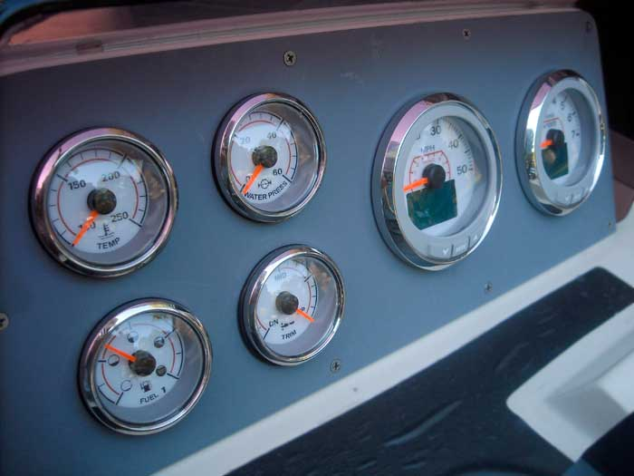 continuousWave: Whaler: Reference: Evinrude ICON Gauges
